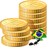 Brazilian Localization Sale